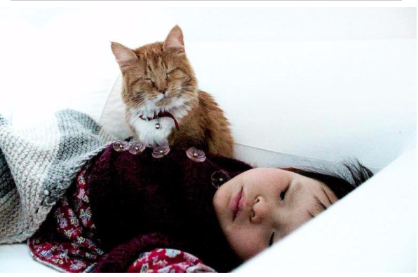 Sleeping Girl and Her Cat